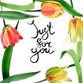 Fotografie Beautiful yellow tulips with green leaves isolated on white. Watercolor background illustration. Just for you calligraphy.