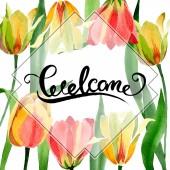 Krásné žluté tulipány se zelenými listy izolované na bílém. Ilustrace akvarel zázemí. Úvodní kaligrafie