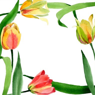 Beautiful yellow tulips with green leaves isolated on white. Watercolor background illustration. Watercolour drawing fashion aquarelle. Frame border ornament. stock vector
