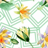 Krásné žluté lotosové květy izolované na bílém. Ilustrace akvarel zázemí. Akvarel výkresu módní aquarelle. Vzor bezešvé pozadí