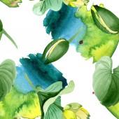 Fotografie Krásné žluté lotosové květy izolované na bílém. Ilustrace akvarel zázemí. Akvarel výkresu módní aquarelle. Vzor bezešvé pozadí