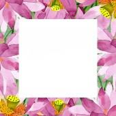 Krásné fialové lotosové květy izolované na bílém. Ilustrace akvarel zázemí. Akvarel výkresu módní aquarelle. Frame hranice ornament