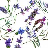 Gyönyörű lila levendula virágok elszigetelt fehér. Akvarell háttér illusztráció. Akvarell rajz divat aquarelle. Varratmentes háttérben minta