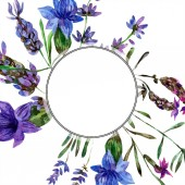 Fotografie Beautiful purple lavender flowers isolated on white. Watercolor background illustration. Watercolour drawing fashion aquarelle. Frame border ornament.