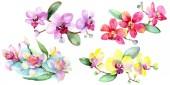 Gyönyörű orchideák elszigetelt fehér, zöld levelekkel. Akvarell háttér illusztráció. Akvarell rajz divat aquarelle. Elszigetelt orchideák ábra elem