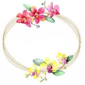 Fotografie Nádherné květy orchidejí se zelenými listy izolované na bílém. Ilustrace akvarel zázemí. Akvarel výkresu módní aquarelle. Frame hranice ornament