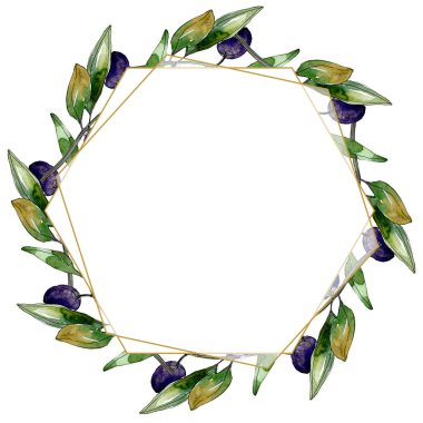 Olives on branches with green leaves. Botanical garden floral foliage. Watercolor illustration on white background. Frame golden crystal.