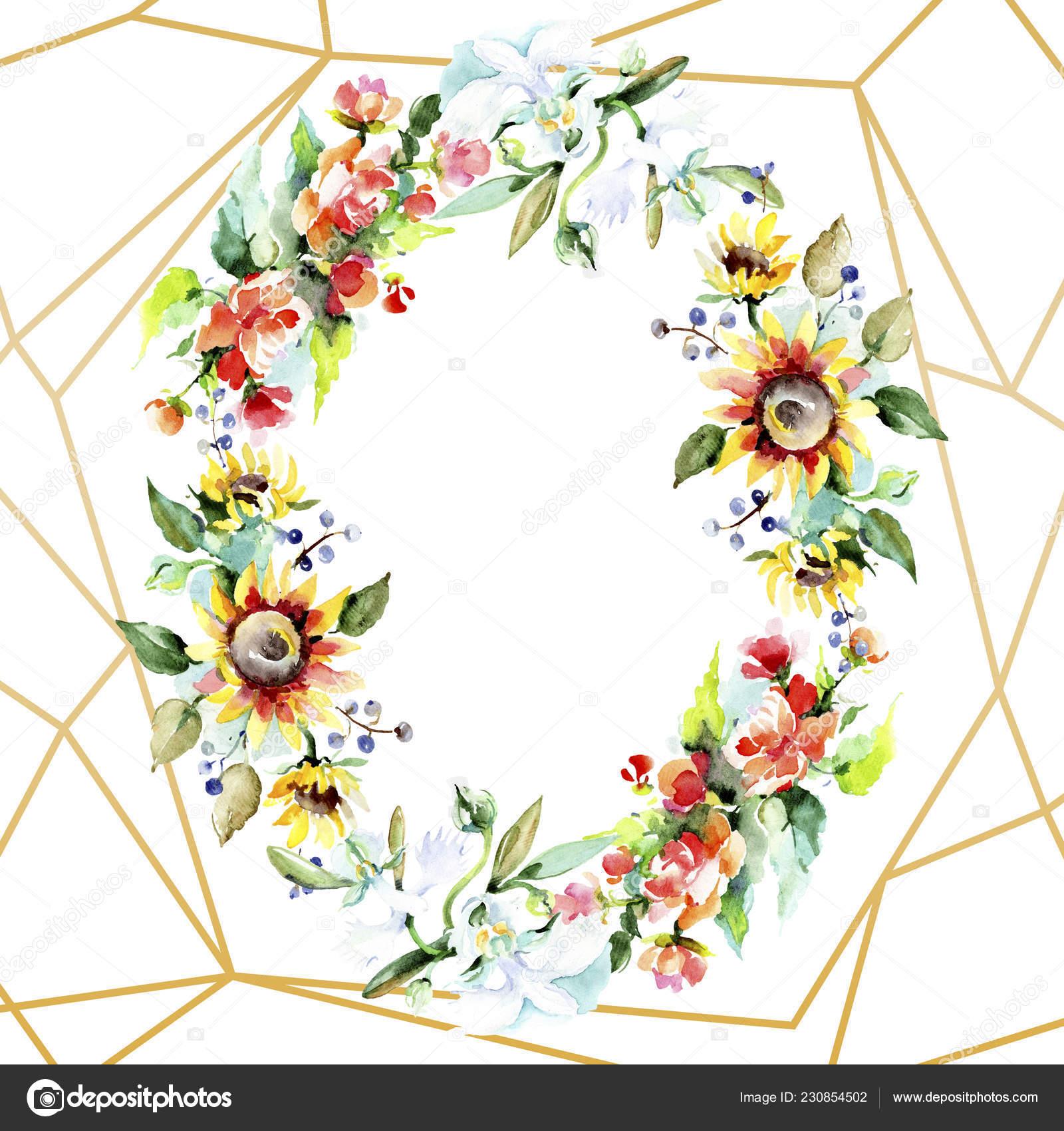 Lindas Flores Aquarela Sobre Fundo Branco Aquarelle Desenho