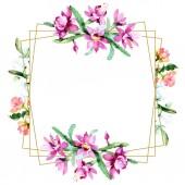 Krásné akvarel květy na bílém pozadí. Akvarel výkresu aquarelle. Izolované kytici květin obrázek prvku. Frame hranice ornament