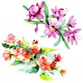 Gyönyörű akvarell virágok fehér háttér. Akvarell rajz aquarelle illusztráció. Elszigetelt csokor virágot ábra elem.