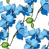 Fényképek Gyönyörű kék orchidea virágok fehér háttér. Varratmentes háttérben minta. Anyagot a nyomtatási textúrát