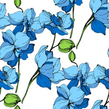 Beautiful blue orchid flowers on white background. Seamless background pattern. Fabric wallpaper print texture. clip art vector