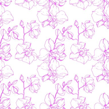 Beautiful pink orchid flowers. Seamless background pattern. Fabric wallpaper print texture. Engraved ink art. clip art vector