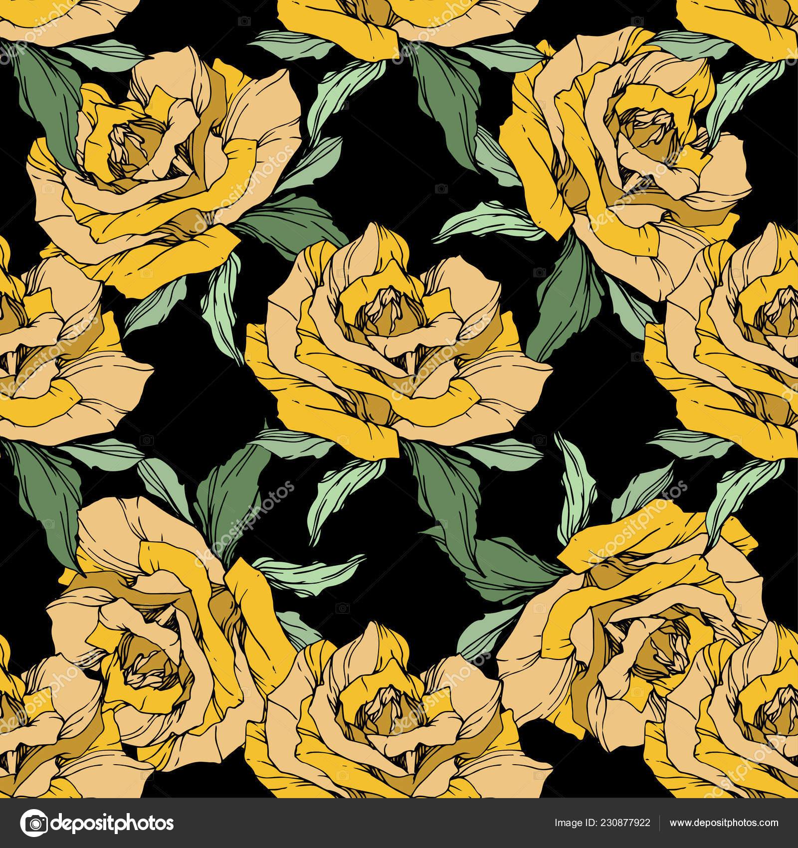Rosas Amarillas Tinta Grabado Arte Patron Fondo Transparente Fondo