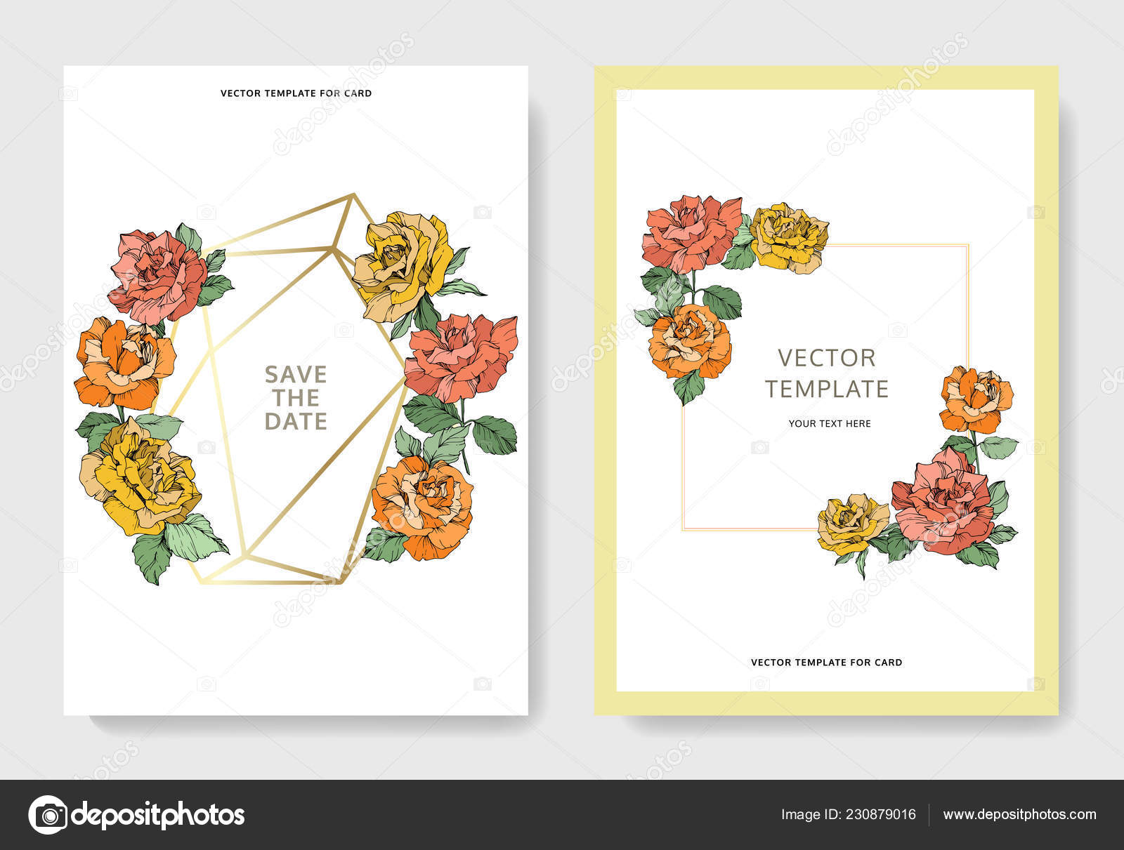 Vector Rose Flowers Wedding Cards Floral Borders Thank You