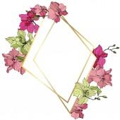 Fotografia Bei fiori dellorchidea rosa e gialli. Arte di inchiostro inciso. Cristallo di cornice dorato su priorità bassa bianca