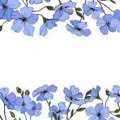 Vektor. Modré květy lnu se zelenými listy a pupeny izolovaných na bílém pozadí. Ryté inkoust umění