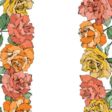 Vector rose flowers floral borders on white background. Yellow, orange and pink engraved ink art. clip art vector