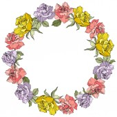 Vector. Rose flowers floral wreath on white background. Yellow, purple and pink roses engraved ink art.