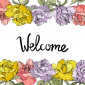 Vector rose flowers floral borders on white background. Yellow, purple and pink engraved ink art. Welcome inscription