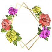Vector. Rose flowers and golden crystal frame. Coral, yellow and purple roses engraved ink art. Geometric crystal polyhedron shape on white background.