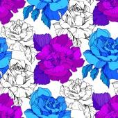 Fotografie Modré a fialové růže. Ryté inkoust umění. Vzor bezešvé pozadí. Látkové tapety tisk textury na bílém pozadí
