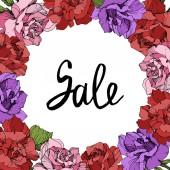 Vektor. Květy růže rám na bílém pozadí. Červené, růžové a fialové růže vyryto inkoust umění. Prodej ručně monogram kaligrafie.