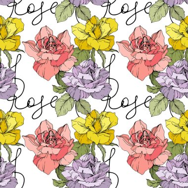 Pink, yellow and purple roses. Engraved ink art. Seamless background pattern. Fabric wallpaper print texture on white background. clip art vector