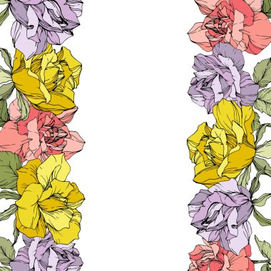 Vector rose flowers floral borders on white background. Yellow, purple and pink engraved ink art. clip art vector