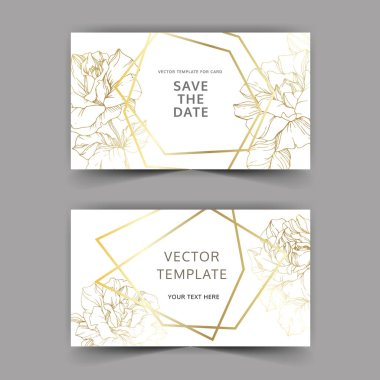 Vector. Golden rose flowers on cards. Wedding cards with golden borders. Thank you, rsvp, invitation elegant cards illustration graphic set. Engraved ink art.