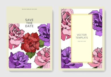Beautiful rose flowers on cards. Wedding cards with floral decorative borders. Thank you, rsvp, invitation elegant cards illustration graphic set. Engraved ink art. clip art vector
