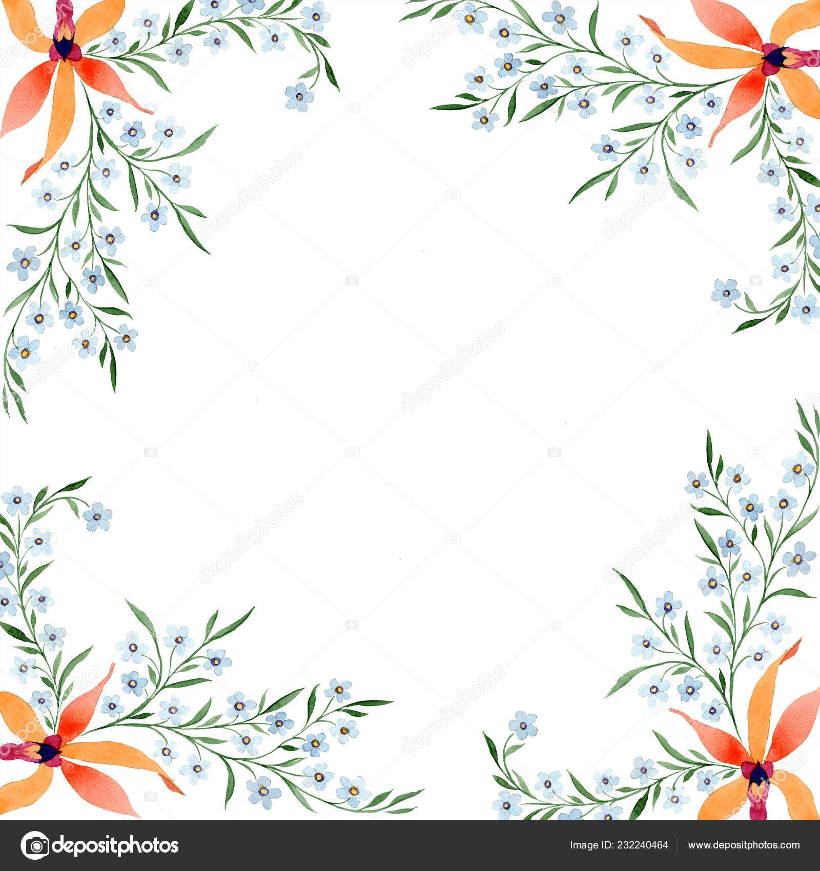 Blue Orange Flowers Watercolour Drawing Background Orchids Forget