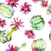 Fotografie Zelená kaktusy s růžovými květy. Akvarelu bezešvé pozadí vzorek