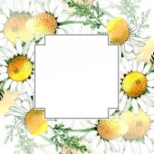 Fotografie Wild spring Chamomile flowers. Watercolor background illustration set. Watercolour drawing fashion aquarelle isolated. Frame border