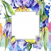 Rám s fialové a žluté kosatce. Ilustrace akvarel zázemí s květy. Akvarel výkresu módní aquarelle.
