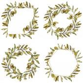 Cornici con olive verdi fondo acquerello impostare. Aquarelle di moda disegno acquerello isolato