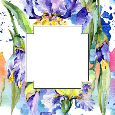 Frame with purple and yellow irises. Watercolor background illustration set with flowers. Watercolour drawing fashion aquarelle. stock vector