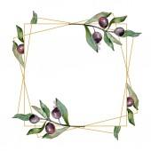 Fotografie Rahmen mit schwarzen Oliven Aquarell Hintergrund. Aquarell-Zeichenset.