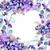 Rám s fialovou kyticí. Sada akvarel pozadí obrázku. Akvarel výkresu módní aquarelle izolované
