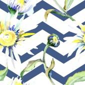 Daisy květiny pozadí. Sada akvarel pozadí obrázku. Akvarel, samostatný výkresu aquarelle. Vzor bezešvé pozadí. Fabric tapety tisku textura