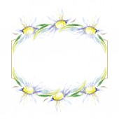 Frame with daisy flowers. Watercolor background illustration set. Watercolour drawing fashion aquarelle isolated.