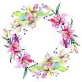 Rám s růžové a fialové květy orchidejí. Akvarel, samostatný výkresu módní aquarelle. Ornament hranice
