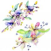 Růžové a fialové orchideje. Sada akvarel pozadí obrázku. Akvarel květ kytice ilustrace prvek