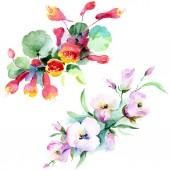 Csokor, színes tavaszi virágok. Akvarell háttér illusztráció készlet. Akvarell rajz divat aquarelle elszigetelt. Elszigetelt csokor ábra elem
