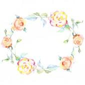 Váz, narancs Rózsa virágok. Akvarell háttér illusztráció készlet. Akvarell rajz divat aquarelle elszigetelt. Díszítő szegély