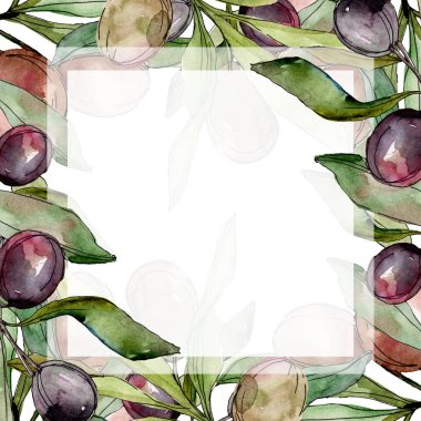 Frame with Black olives watercolor background. Watercolour drawing set. stock vector