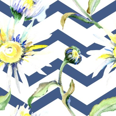 Daisy flowers background. Watercolor background illustration set. Watercolour drawing aquarelle isolated. Seamless background pattern. Fabric wallpaper print texture. stock vector