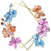 Vektor růžové, oranžové a modré orchideje. Květy, izolované na bílém. Ryté inkoust umění. Květinový rámeček hranice