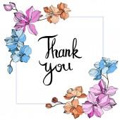 Fotografie Vektor-rosa, orange und blaue Orchideen. Wildblumen isoliert auf weiss. Gravierte Tinte Kunst. Floral Rahmenkontur mit Thank You Schriftzug