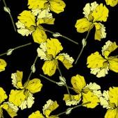 Vektor žluté kosatce izolované na černém pozadí. Barevné květy. Ryté inkoust umění. Vzor bezešvé pozadí. Tiskové textura tapety